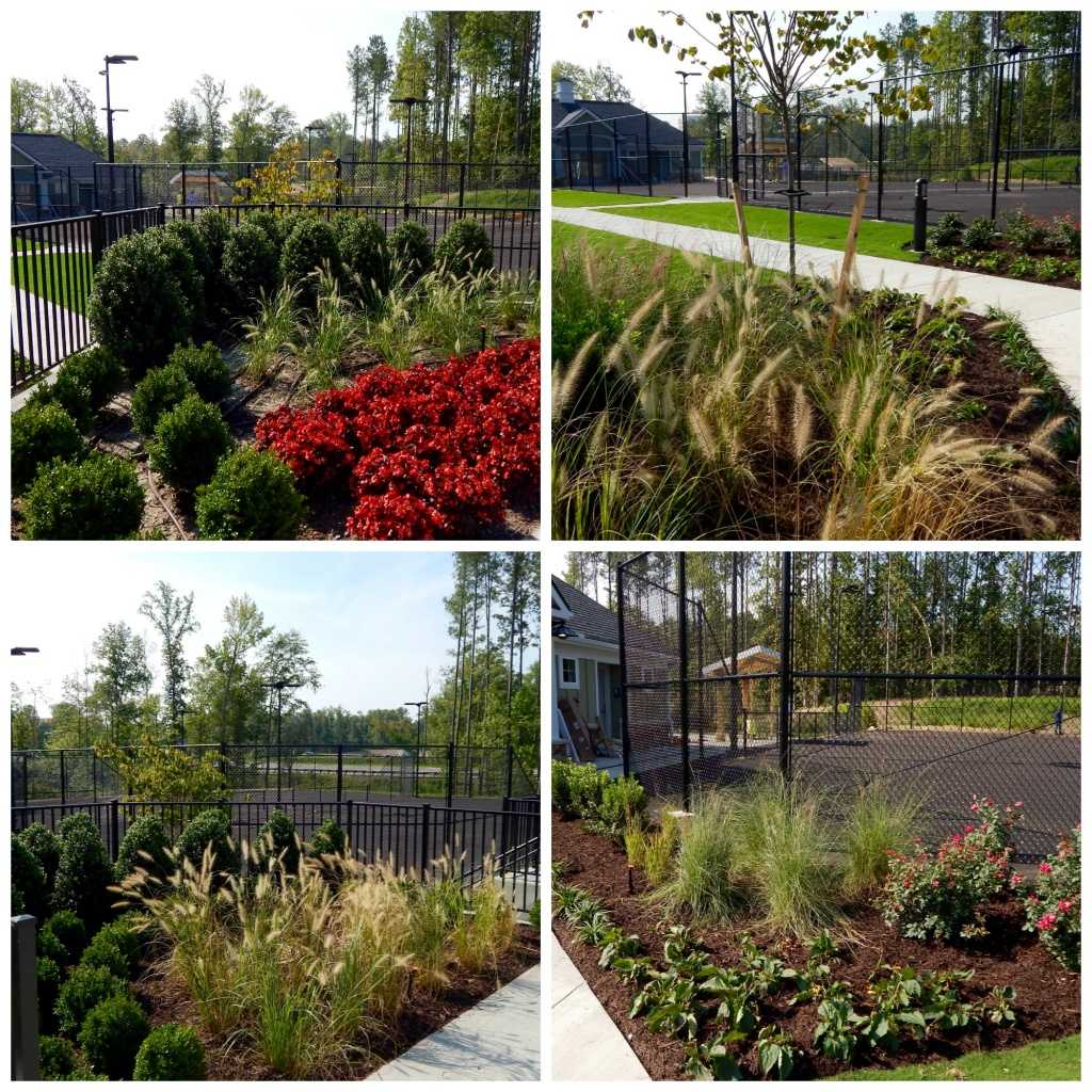 Here At James River Nurseries We Take Pride Knowing Have Earned A Retion Among Many Of The Leading Developers General Contractors And Landscape